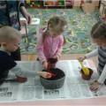 Экологический проект в старшей разновозрастной группе «Тюльпаны для мамы»