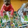 Ознакомление с живой природой «Рисование комнатного растения с натуры» (старшая группа)
