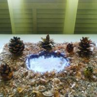 Мастер-класс по созданию осеннего пейзажа из природных материалов в старшей группе «У осеннего пруда»