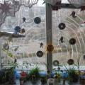 Огород на окне.