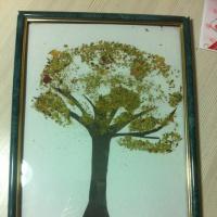Детский мастер-класс по аппликации с использованием природного материала «Осеннее дерево»
