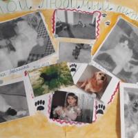 Фотовыставка «Мой любимый питомец». Вторая младшая группа