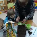 Дидактическая игра «Юный садовник»