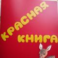«Красная Книга», изучаем охраняемых животных