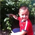 Опыт работы по экологическому воспитанию старших дошкольников «Удивительный мир природы»