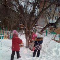 Фотоотчет об участии в городской природоохранной акции «Добрая зима»