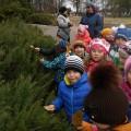 Фотоотчёт по прогулке «Осенний парк» старшая группа ДС «Калинка»