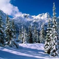 Конспект НОД с использованием здоровье сберегающих технологий «Путешествие в зимний лес»