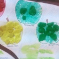 Коллективная работа «Ветка яблони» (рисование пальчиковыми красками и лепка)