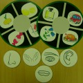 Виниловая пластинка-основа для дидактических пособий