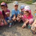 Проект по формированию у детей знаний о свойствах камней «Удивительное под ногами»