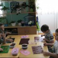 Развитие мелкой моторики рук и воображения в группе детей с ОНР