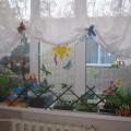 Проект «Огород на окне» (подготовительная группа)
