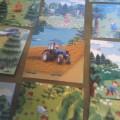 Дидактическая игра «Стань другом природы»