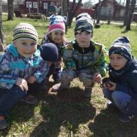 Фотоотчёт «Наблюдения на прогулке весной» в средней группе