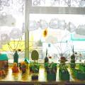 Проект «Огород на окне» (вторая младшая группа)
