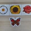 Дидактическое пособие с бабочкой