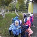 Фотоотчёт наблюдения с детьми второй младшей группы