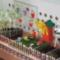 «Огород на окошке» (фотоотчет)