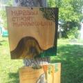 Краеведение в нашем детском саду: «Деревья нашего участка»