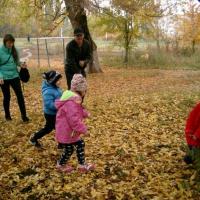 «Здравствуй, осень». Фотоотчет о семейно-спортивном, познавательно-развлекательном досуге детей и родителей в выходной день