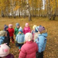 Проект «Осень в гости к нам пришла и грибочки принесла»
