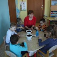 Формирование поисково-исследовательской деятельности у дошкольников с нарушением опорно-двигательного аппарата