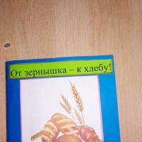 Мастер-класс по изготовлению книжки-малышки «От зернышка— к хлебу» со старшими дошкольниками
