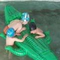 Организация игровой деятельности младших дошкольников в плавательном бассейне ДОУ