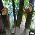 Подготовка участка к конкурсу в детском саду «Лучший участок»