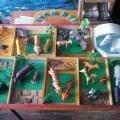 Развивающая среда группы «Деревенский дворик-домашние животные», «Зоопарк-дикие животные»