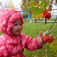 «Ах, какая осень, ах, какая!» Фотозарисовка осенней прогулки