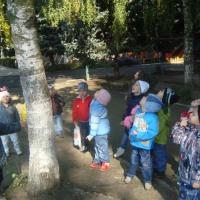 Консультация для воспитателей «Нравственное воспитание дошкольников через воспитание любви к природе»