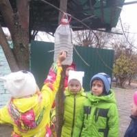 Фотоотчет о работе в рамках акции «Покормите птиц»