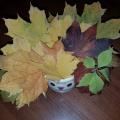 Мастер-класс «Поделки из листьев»