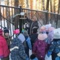 Учебный мини-проект познавательно-речевому развитию «Подкормим птиц зимой»