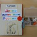 Лэпбук «Дикие животные России»