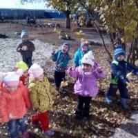 Конспект прогулки в первой младшей группе «Осенние наблюдения»
