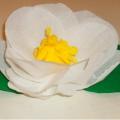 Мастер-класс по изготовлению цветка из гофрированной бумаги.
