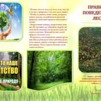 Буклет по экологии «Правила поведения в лесу»