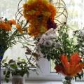 Выставка цветов «Цветы последние милей роскошных первенцев полей» (фотоотчёт)