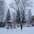 «Первый снег вдруг пришёл, первый снег» (фотозарисовка)