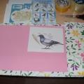 Мастер-класс по изготовлению лэпбука «Птицы»