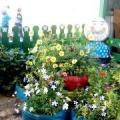 Хорошо у нас в саду, не дождусь, когда пойду! Оформление участка детского сада своими руками— это увлекательно и интересно!