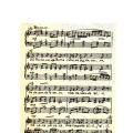«Ой метелица-зима» музыка Михайленко слова Е. Волокитиной