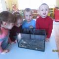 НОД с использованием нетрадиционных материалов в группе раннего возраста «Черепашка»