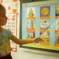 Конспект НОД по познавательному развитию «Сердце и кровеносная система» для детей старшего дошкольного возраста