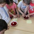 Интегрированное занятие по математике в подготовительной к школе группе «Путешествие по островам»