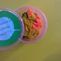 Мастер-класс по изготовлению дидактической игры «С какого дерева лист?» для детей 3–4 лет