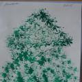 Полное годовое планирование работы кружка по нетрадиционному рисованию «Волшебные пальчики» (младшая группа). Часть 2
